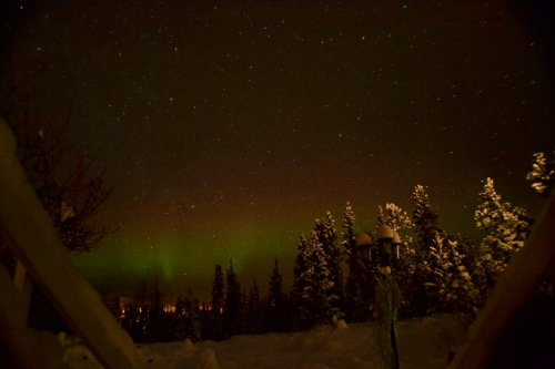 northern light viewing from Hidden Valley bed & breakfast in Whitehorse