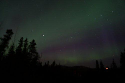 Aurora Borealis in Whitehorse