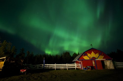 Aurora Borealis over the Barn at Hidden Valley B&B in Whitehorse, Yukon