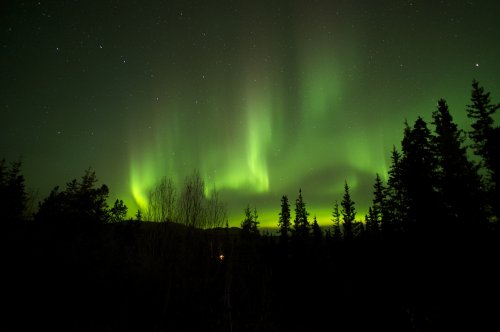 Northern Lights from from Deck at B&B in Whitehorse, Yukon