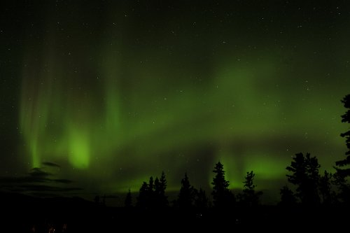 Northern Lights, Aurora, Whitehorse, Yukon