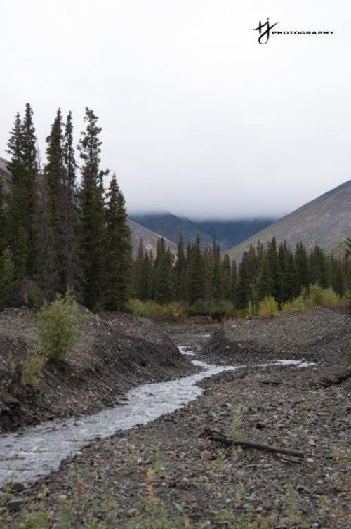Creek Winding Through Valley in the Yukon