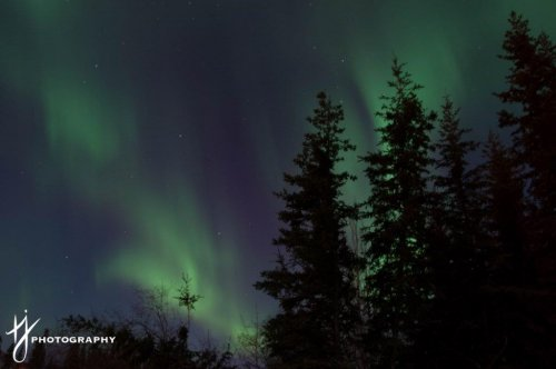 Whitehorse Northern Lights