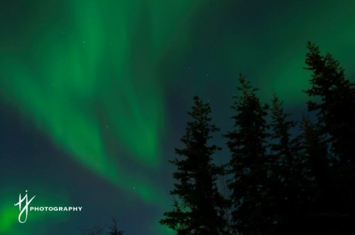 Northern lights in the Yukon