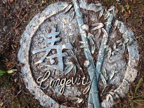 longevity stepping stone at Yukon B&B