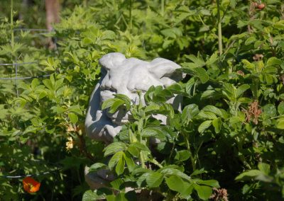 Hidden Gargoyle, Hidden Valley Bed and Breakfast, Whitehorse