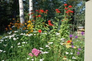 Hidden Valley Bed & Breakfast, Summer Garden, Whitehorse Accommodation, Yukon