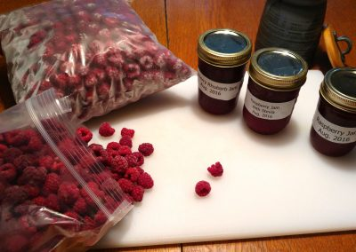 Rasperry bounty. From the garden at Hidden Valley Bed & Breakfast. Whitehorse accommodation. Yukon.