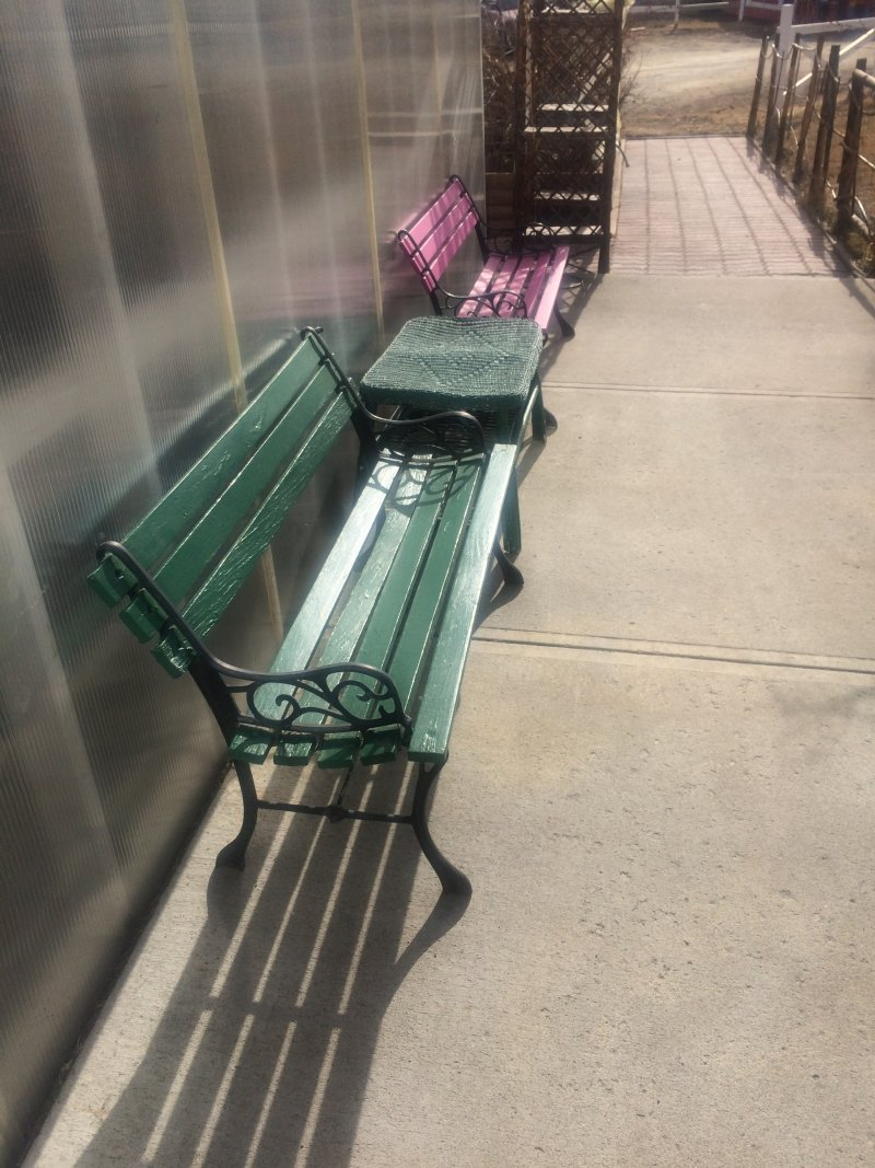 Outdoor benches with new paint