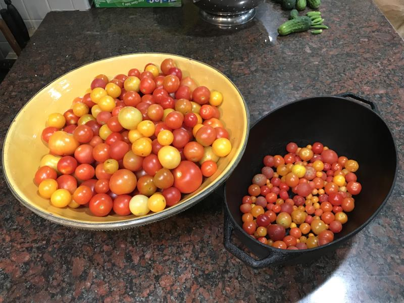 Tomatoes from 2018 Harvest