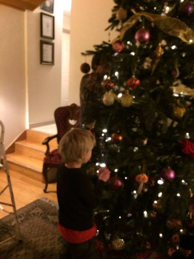 Young Person Decorating the Tree