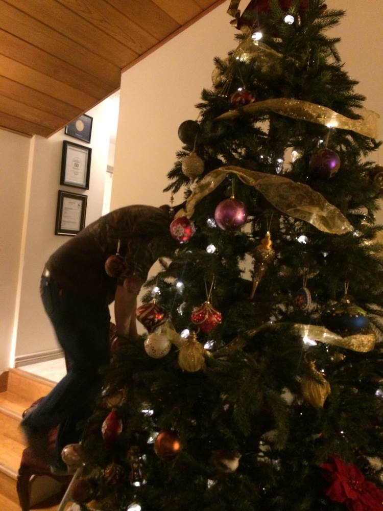 tree decorating at Whitehorse, Yukon B&B